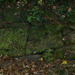 参考資料 諫早神社 江戸池泉の復活