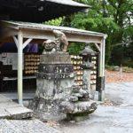 参考資料 諫早神社 狛犬