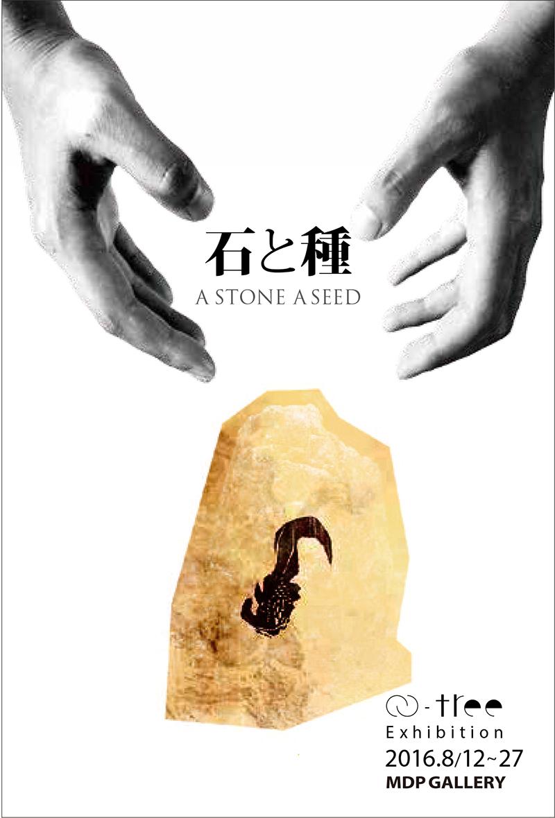 石と種_DM_最終