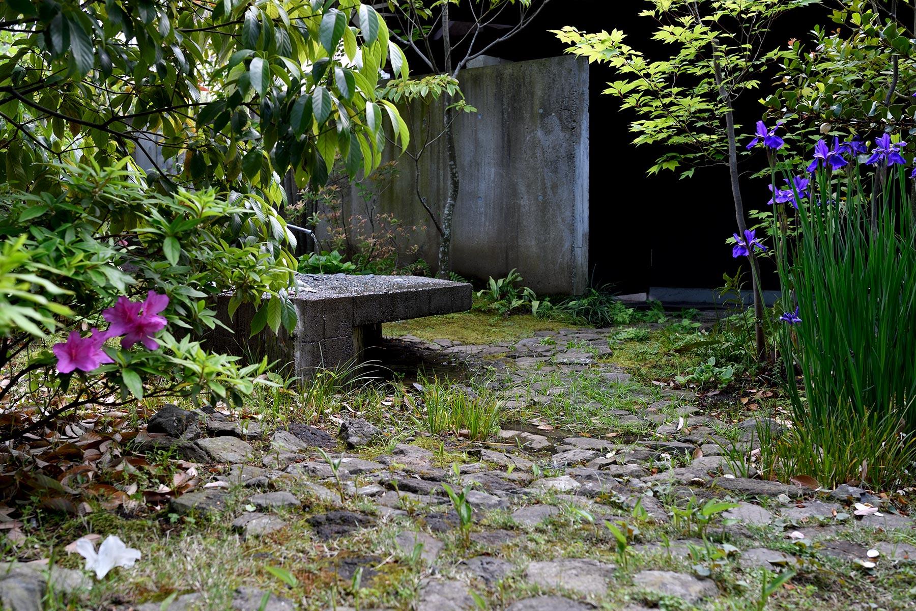 Black soil and hexagon garden n tree for Black garden soil